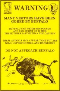 Yellowstone Buffalo Warning